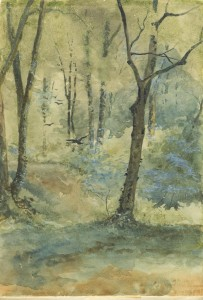The Rooky Woods, watercolor, 1891, Philmont 34005, CH2