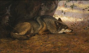 The Sleeping Wolf, oil on canvas on plywood, 1891. Academy for the Love of Learning: Photo credit: James Hart.